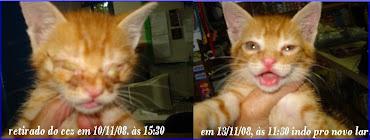 Antes e o Depois