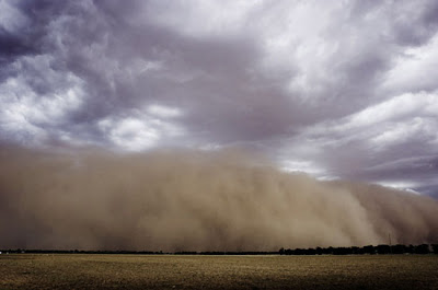 Foto-foto Musim Kemarau Yang Mengerikan [ www.Up2Det.com ]