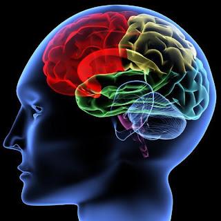 otak jenius