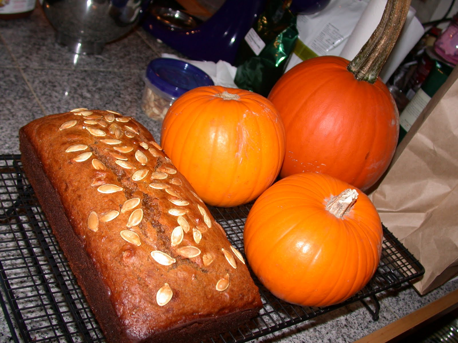 are you eating that?: Pumpkin Spice Bread/Pumpkin Nutella ...