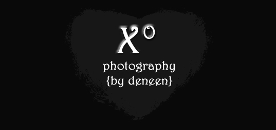 Deneen Bryan - Photographer