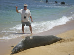 Monk Seal and Me...