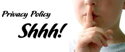 search engine optimization and blogger tips tricks privacy policy