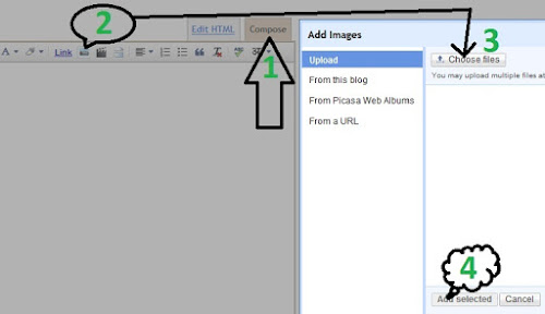 unlimited bandwidth of images for blogger template
