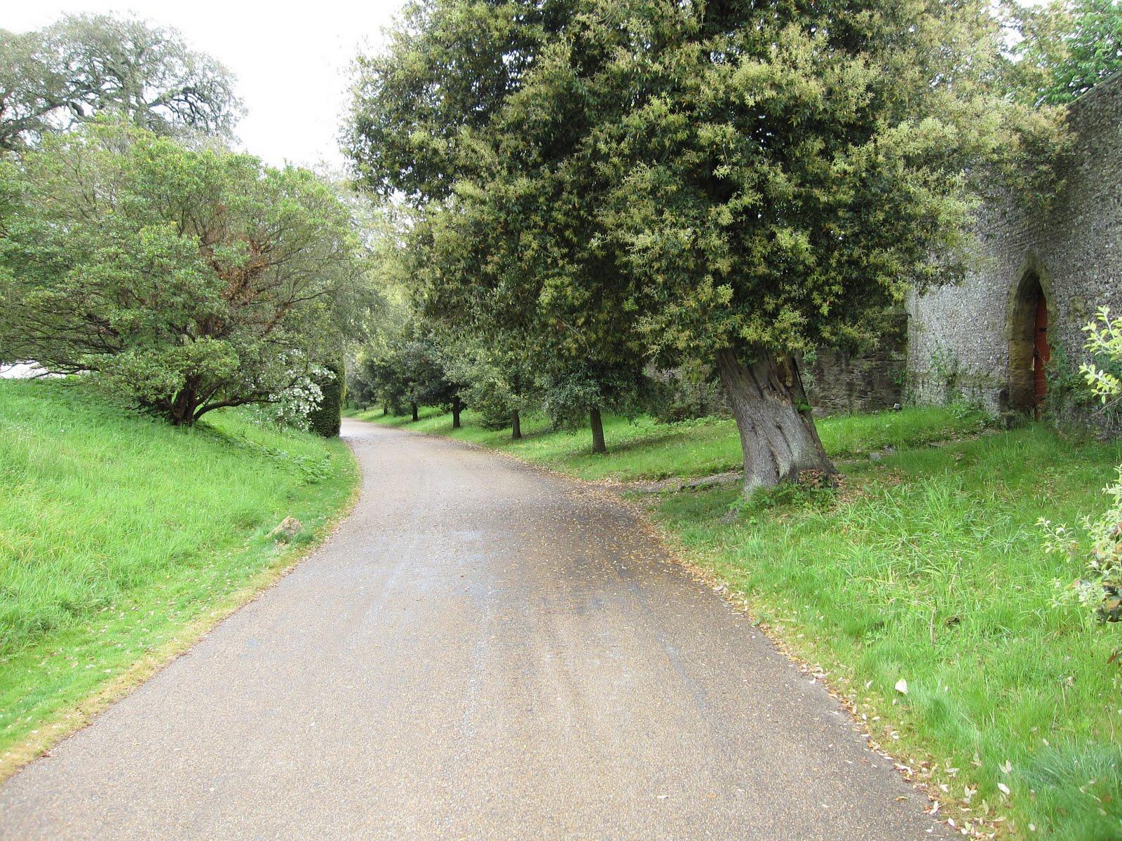 http://3.bp.blogspot.com/_d2Cazc6JnCQ/TAGCn62MR8I/AAAAAAAAA6w/rKVm7wSwm1w/s1600/castle-road.jpg