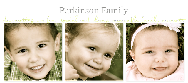 Parkinson Family Blog Design