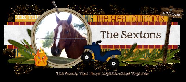 The Sextons Blog Design
