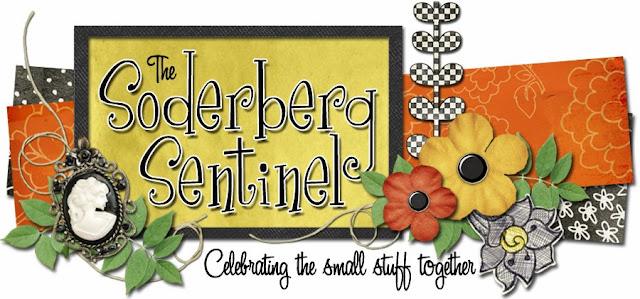 Soderberg Sentinel Blog Design