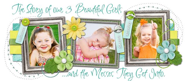 Beautiful Mess Blog Design