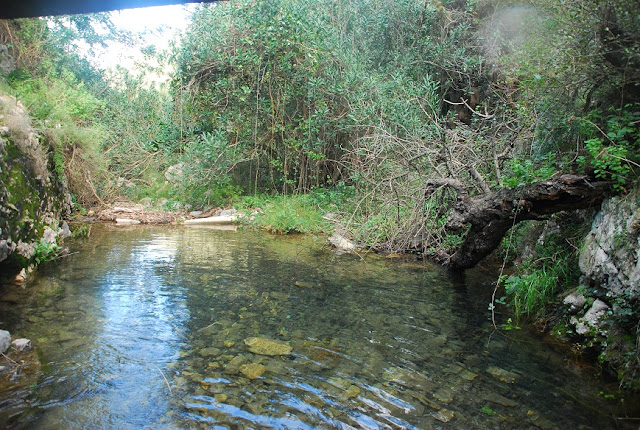 Bassa de la font de Lloret Marxuquera