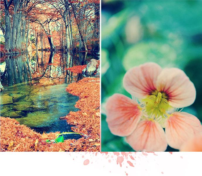 pretty {much} art: a pretty color combo {aqua/salmon}