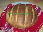 pane tipo altamura con lievito naturale