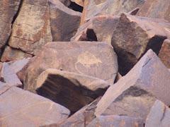 rock carvings, DAMPIER,WA