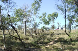 Ord river campground