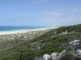 the start of the great Australian bight