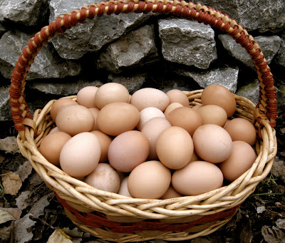 how to clean farm fresh eggs