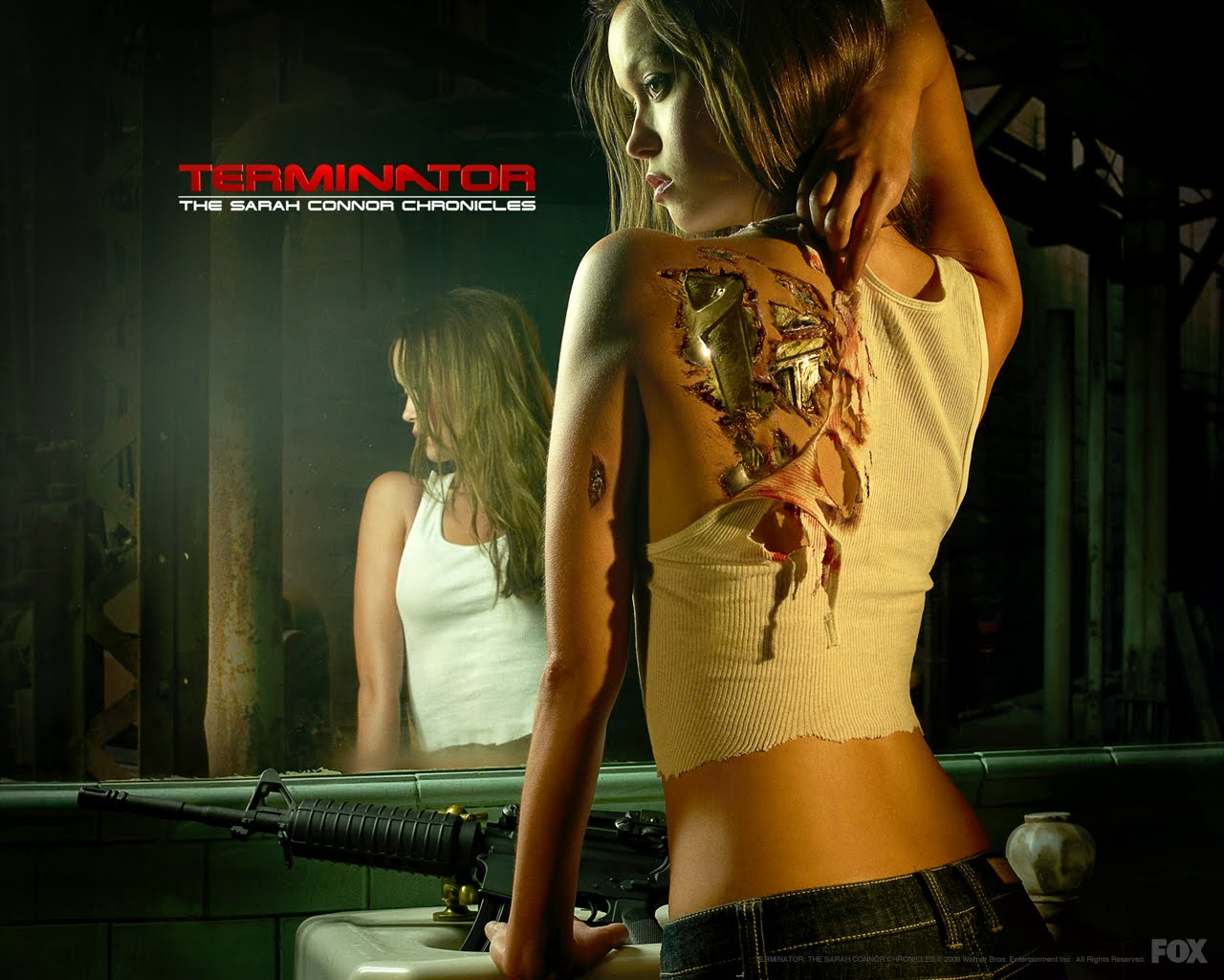 http://3.bp.blogspot.com/_d4m1kUDEkW0/S7z4NAfIO7I/AAAAAAAABHw/0Q6cGrDRUNM/s1600/terminator-the-sarah-connor-chronicles.jpg
