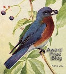 This is an award free, tag free blog.