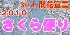 2010 宇和島市さくら便り