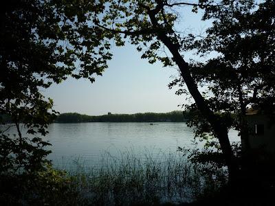 fondo de pantalla de estany de Banyoles