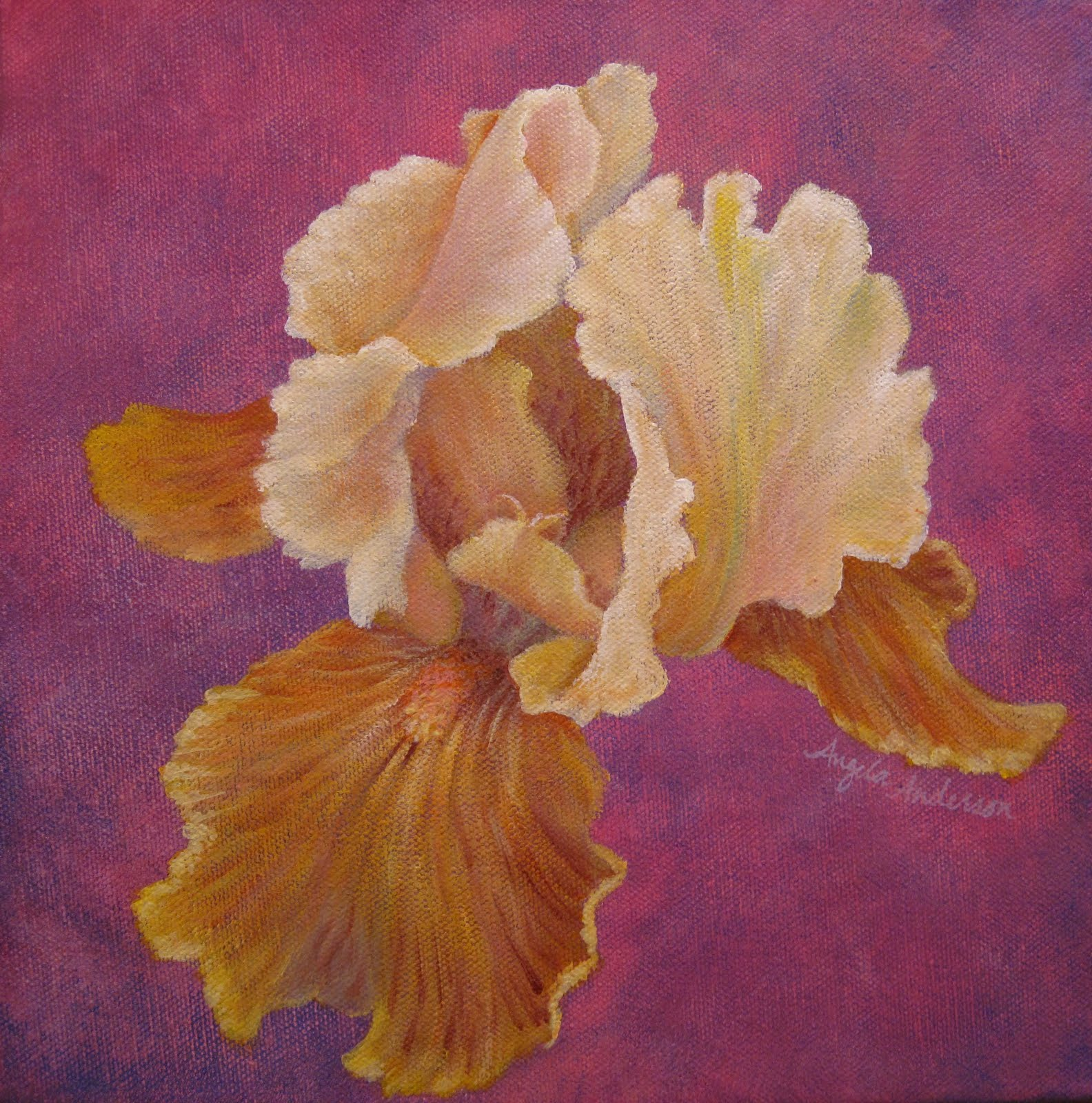 Angela anderson art blog new iris paintings the yellow iris got the most new work done i added a lot more detail to the upper petals portion i think im really finished this time izmirmasajfo