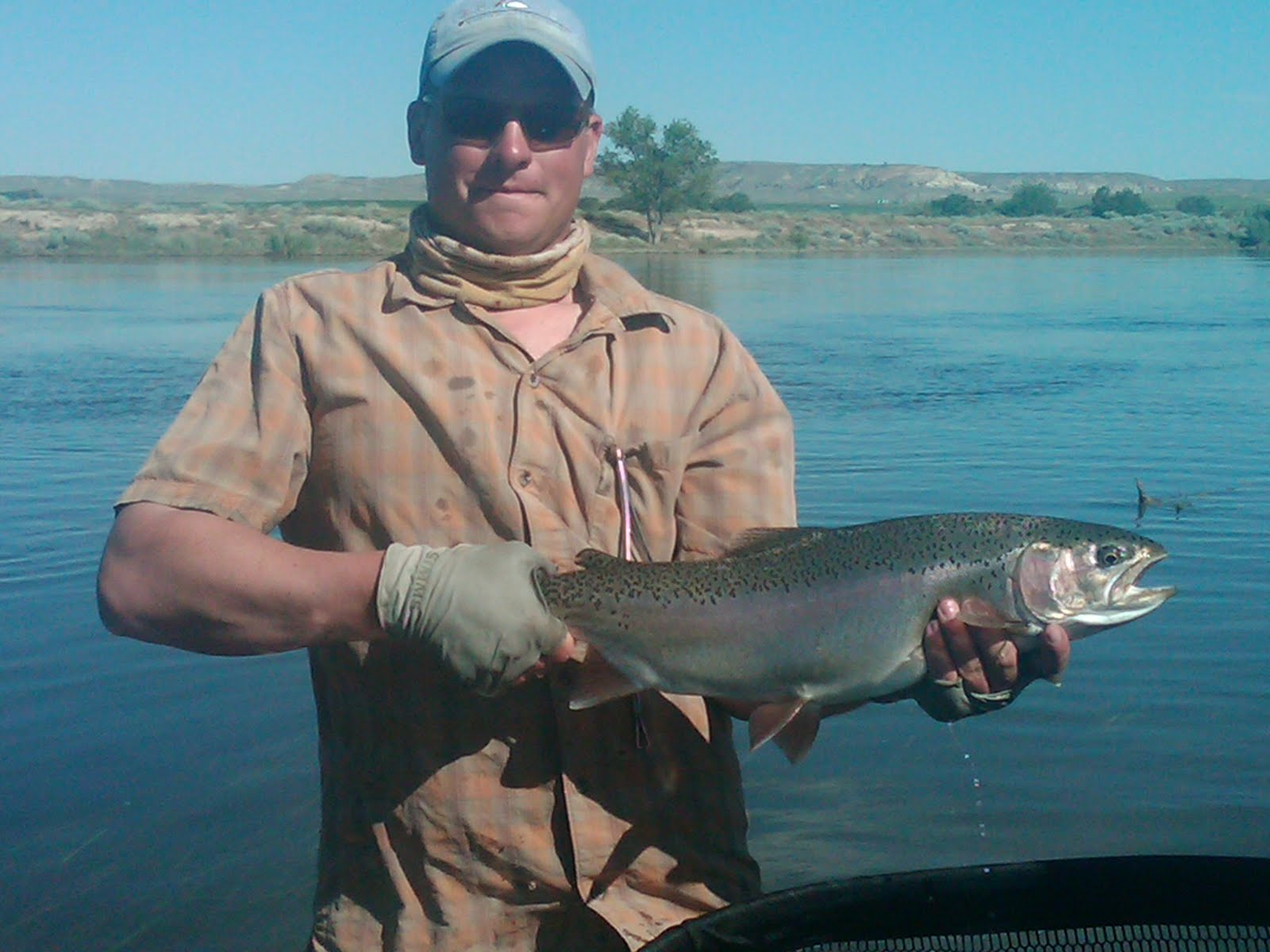 Wyoming fly fisher for Miracle mile fishing report