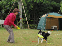 http://border-polly.blogspot.jp/2009/05/blog-post_17.html
