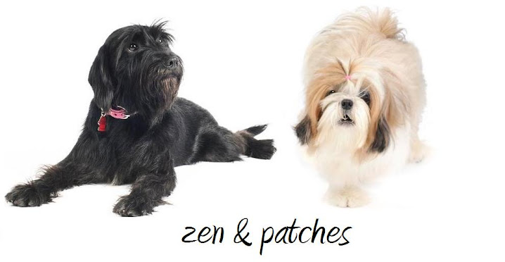 zen and patches