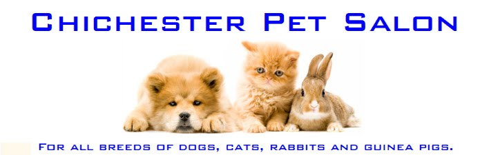 Chichester Pet Salon