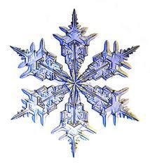 2015 Snowflakes = $300.00