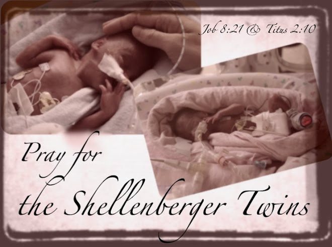 PRAY FOR THE SHELLENBERGER TWINS