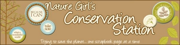 Nature Girl&#39;s Conservation Station
