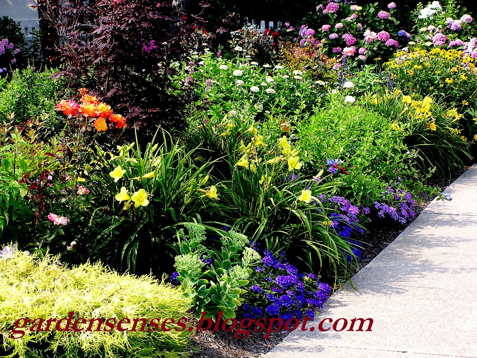 Garden sense garden design i getting started with a plan for Perennial garden design