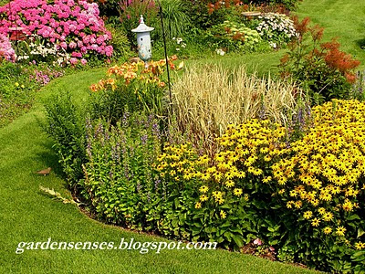Garden Sense: Garden Design IV – Choosing the Perfect Plants