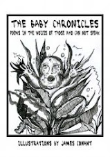 I Co-Edited The Baby Chronicles Anthology