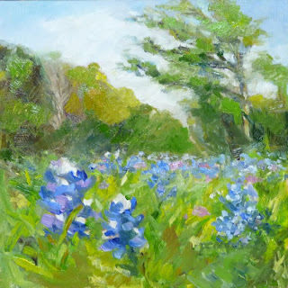 Bluebonnets - The Texas Flower
