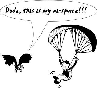 Paragliding Shirt - Free Vector Design