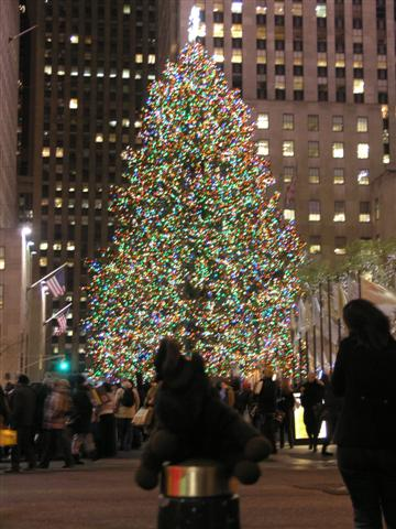 the tallest tree to stand at rockefeller center was a 100 foot spruce used in 1999 - How Many Lights Are On The Rockefeller Christmas Tree