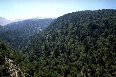 Images of Horsh Ehden
