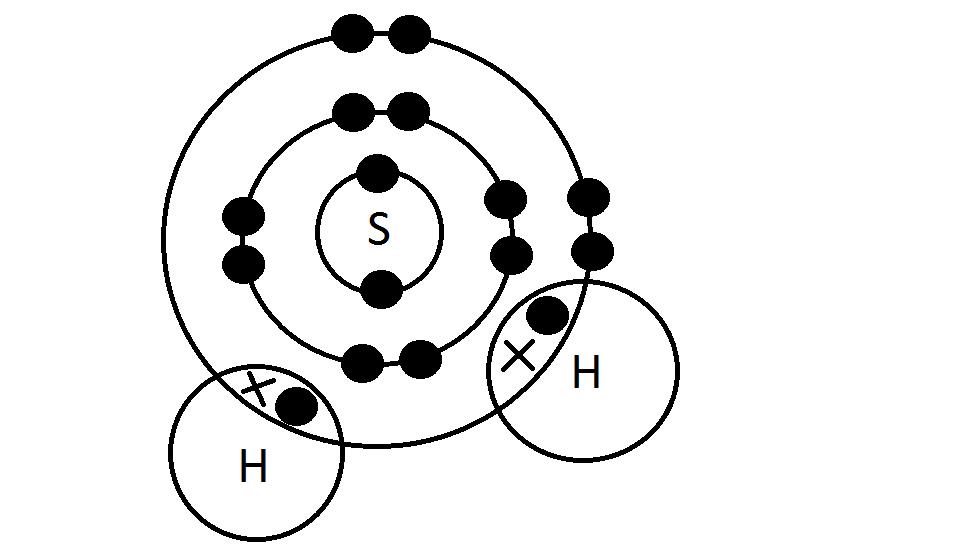 2p1 class science blog  nicholas lee 15