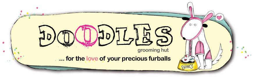 Doodles Grooming Hut