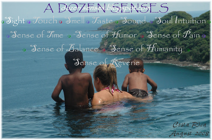 Dozen Senses