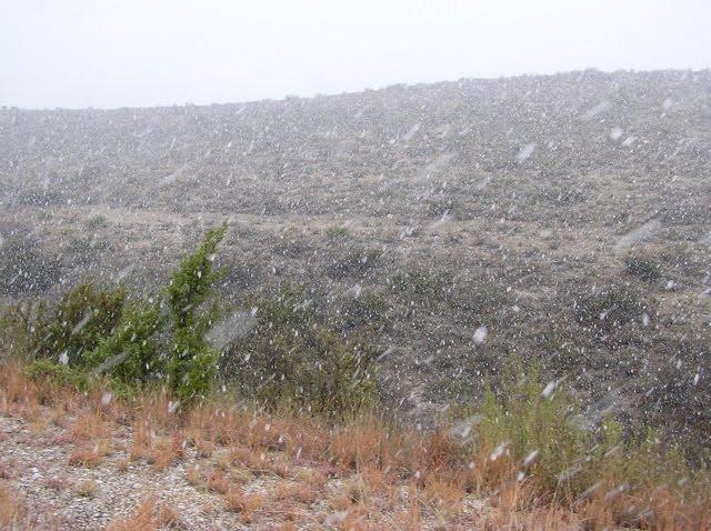 [snow+1109]