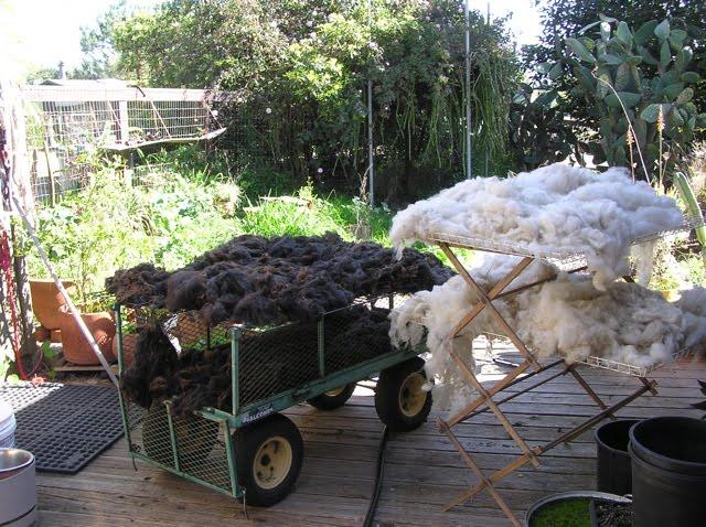 [fleece+drying]