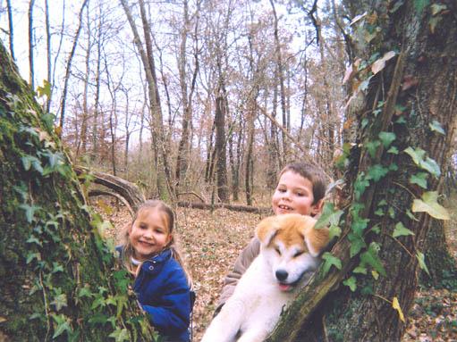Partie de cache cache :Solen,Noan et Yumi 4 mois