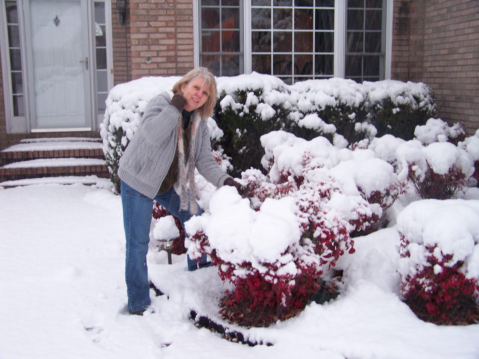 [snow+of+feb+2010+010.JPG]