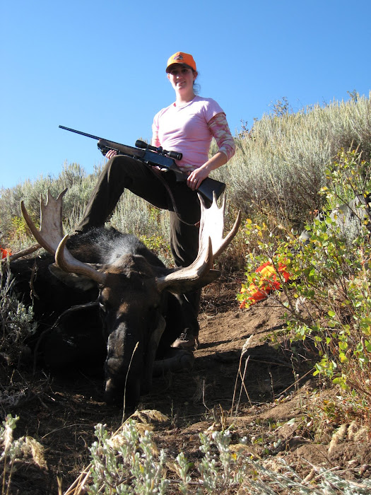 My Moose