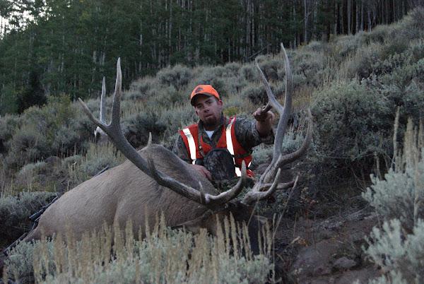 Brad's elk hunt 2009