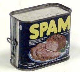¡Hmmm... Rico y nutritivo spam...!