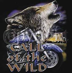 Magic Eye Call of the Wild